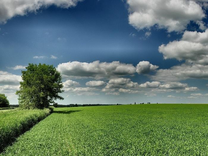 что еще нужно учитывать при выборе земельного участка